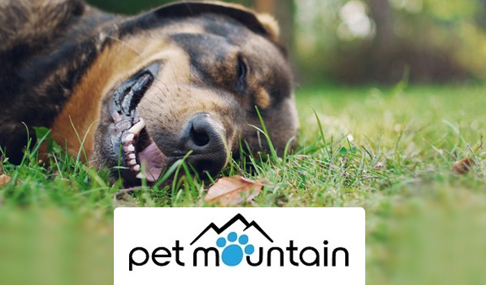 Pet Mountain Coupon Code and Review: Get FREE shipping