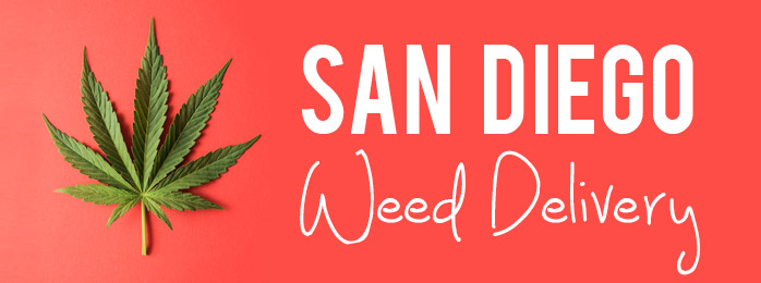 Weed Delivery: The Best Deals and Companies for San Diego Weed Delivery