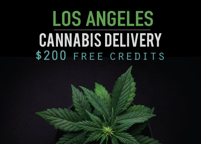 Food Delivery Los Angeles Free First Order