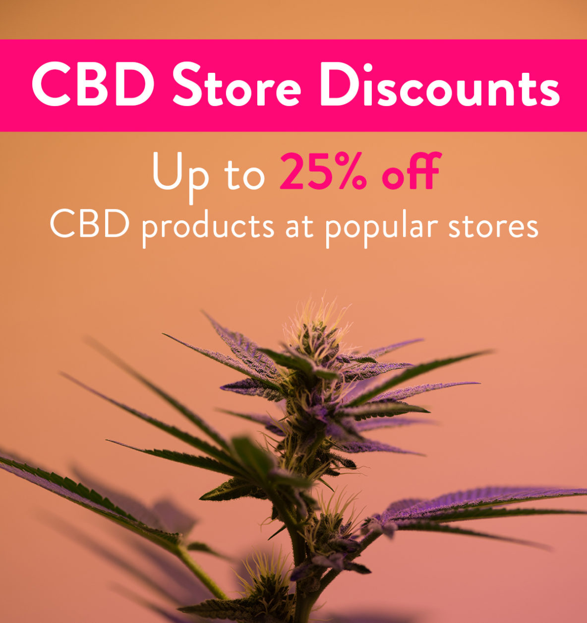 CBD Store Discounts: Get up to 25% CBD Discounts on products at popular CBD Stores!