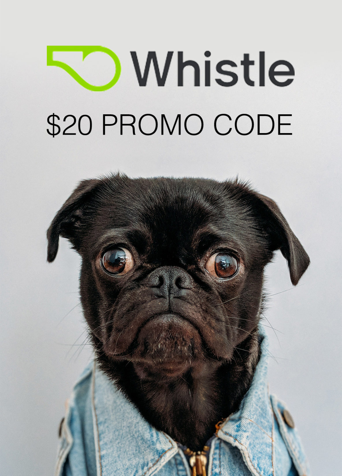 Whistle Promo Code: $20 Discount Dog Tracker